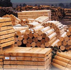 Wood Stoarge and Processing